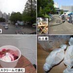 なごやか縁日(名古屋西別院)にて「研ぎや大須」出店の様子