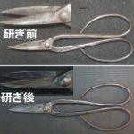 さつき鋏を名古屋「研ぎや大須」にて研ぎ直し。
